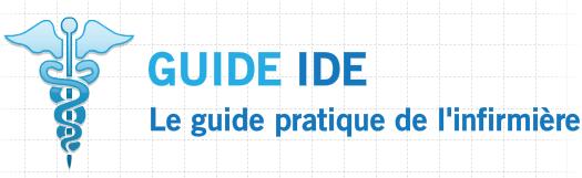 GUIDE IDE